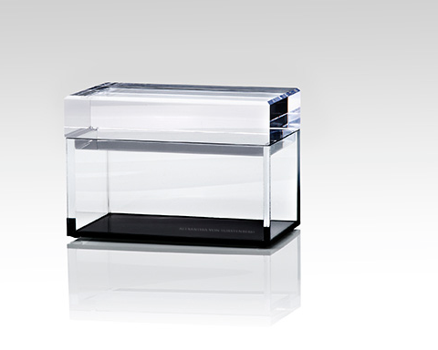 Black bottom lucite box from Alexandra von Furstenberg. i  think I put one of these up every year. I must really like them.