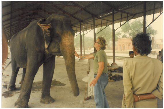 Mark never met an elephant he didn't like. I don't think.