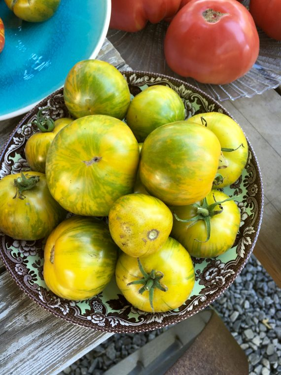 Green Tomatoes that are not fried - yet.
